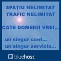 Webhosting de calitate: Bluehost